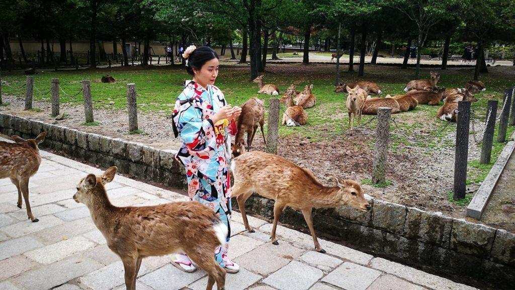 kimono biches Nara Japon